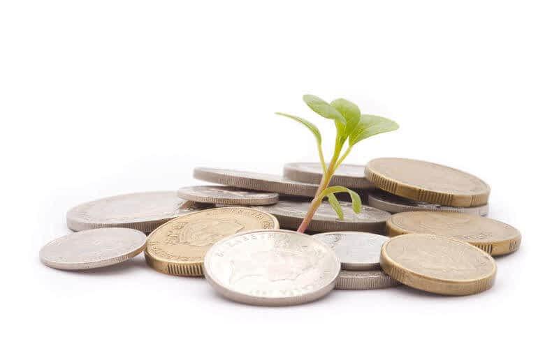 Financial growth coins.